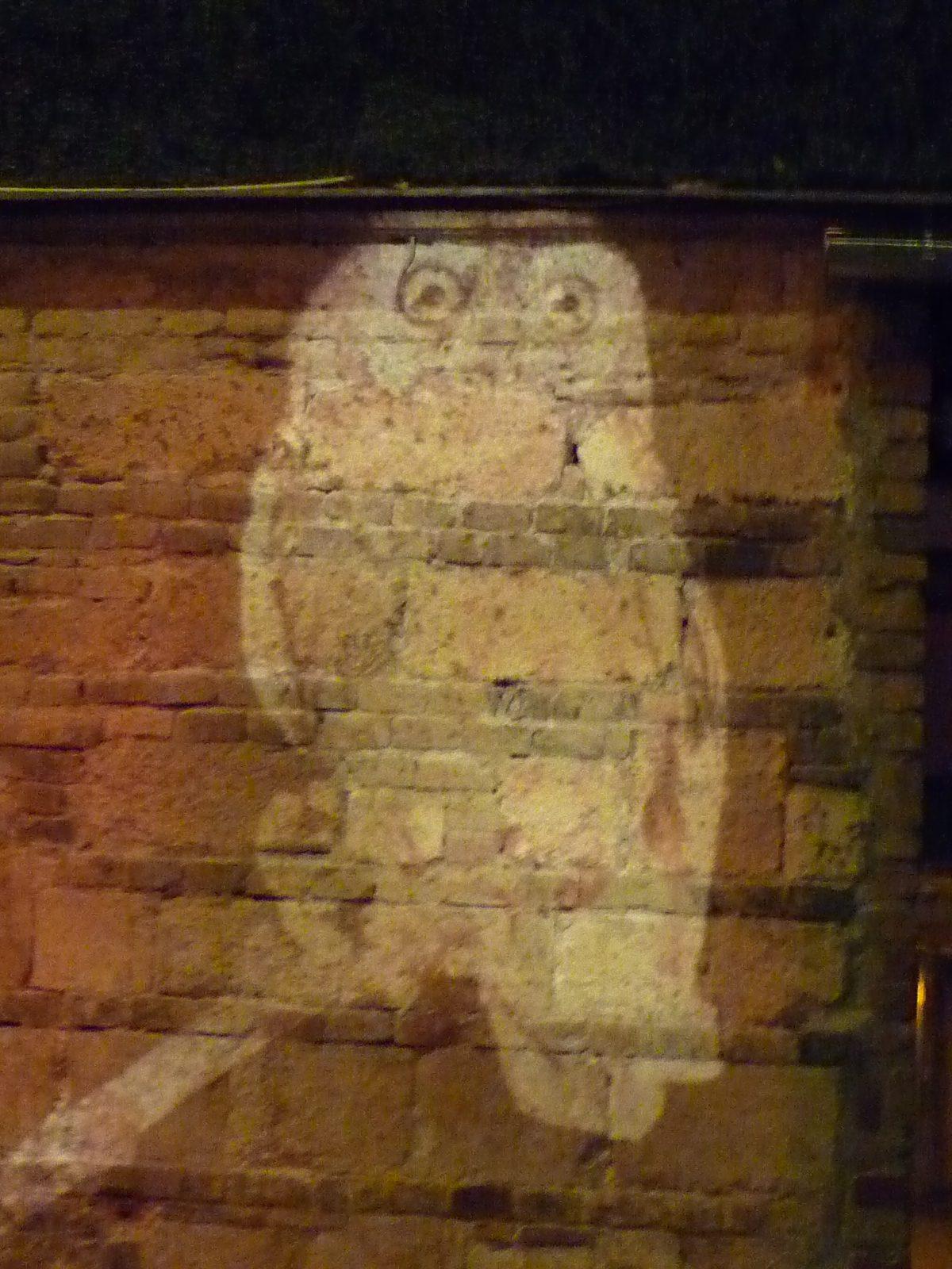 Owl, light projection, Budapest, Hungary
